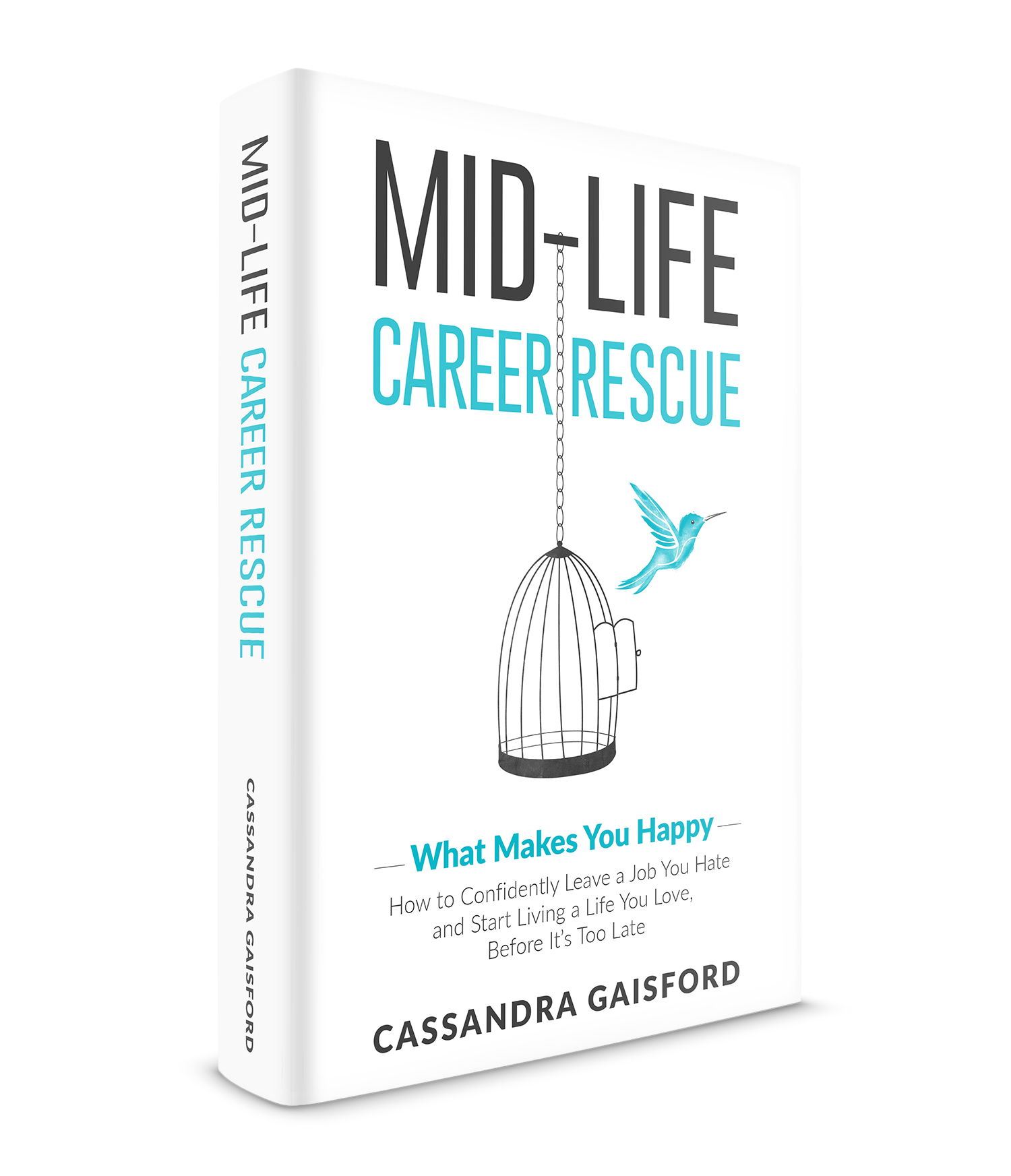 "This is an edited extract from ""Midlife Career Rescue: (What Makes You  Happy): How to confidently leave a job you hate, and start living a life you  love, ..."